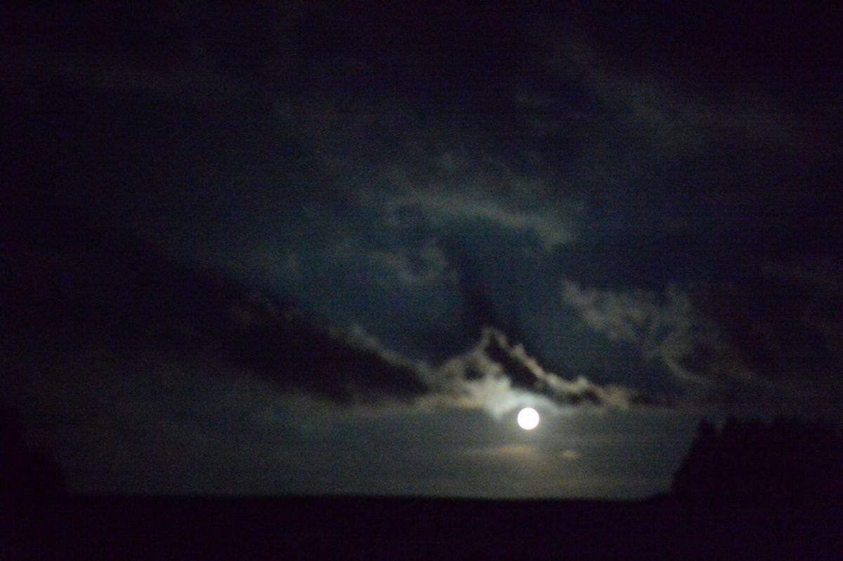 Moon Rossens